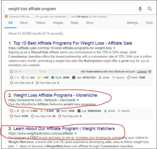 weight loss affiliate program google search