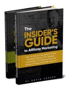 Legendary marketer affiliate marketing domination book